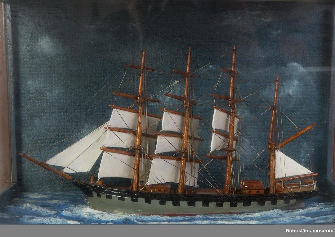 """594 Landskap BOHUSLÄN 503 Kön MAN 394 Landskap BOHUSLÄN  Fyrmastat skepp (bark) med grått skrov. Glasmonter med överdel och hörn av brunmålat trä. Blåmålad fond. På glasmonterns nederdel text: """"4:mast. BARKSKEPP Seglande i Frisk vind.""""Små segeln fast"""".""""  Ur Bohusläningen 1947: """"Den fem (fyr)mastade barken """"France"""" är det senaste tillskottet till museet och är det fartyg som synes på bilden. """"France"""" var en fransk båt, som på sin tid var världens största segelfartyg. Den hade en längd av c:a 124 meter, bredden var 16 m. och djupgåendet 8 m. """"France"""" hade en segelyta av 6.650 kvm. och lastade 7.500 ton. Besättningnen uppgick till 55 man. Denna båt har på ett minutiöst vis återgivits i modellen, som har kostat kapten Olsson ej mindre än 2.000 arbetstimmar.""""  Ur handskrivna katalogen 1957-1958: Fyrmastad barkskepp i vind Modell i glasmonter. Föremålet helt. Från kapten Olssons saml., Fiskebäckskil.  För ytterligare information om förvärvet, se UM5087."""