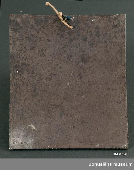 Tavla med silkesmaskens hudfällningar med förklarande text: Silkesmaskens första, andra, tredje och fjerde hudfällning. Götheborg i Juli 1862. Till Uddevalla Museum af J. A. Rossing.  Bilagepärm: Ett tryckt blad med beskrivning på hur man odlar silkeslarver på Sconzonera Hispanica undertecknat av J.A. Rossing. Götheborg, M. Prytz''s Officin 1848.