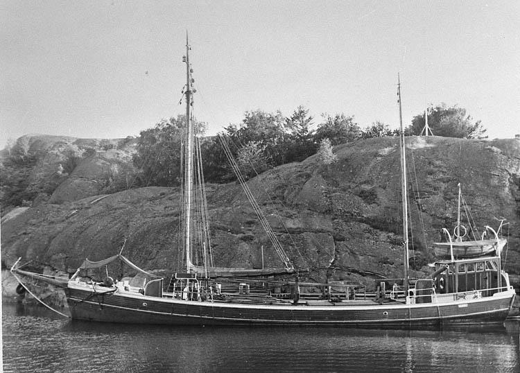 Fraktfartyget LL860 ZITA vid Fiskevik 1959