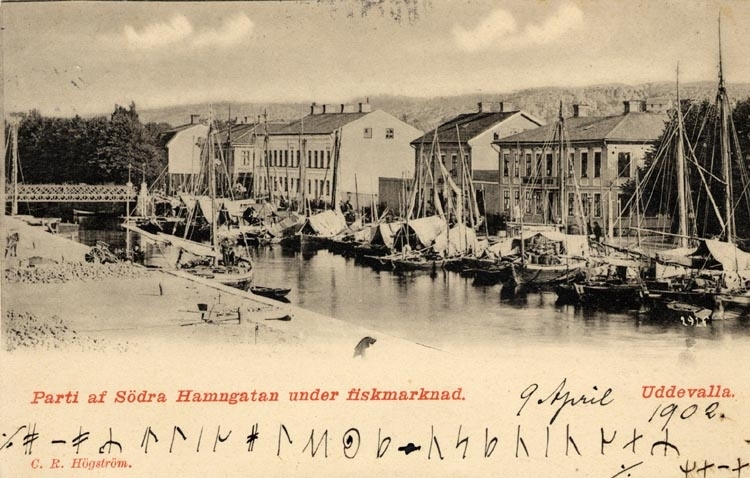 """Tryckt på kortet: """"Parti av Södra Hamngatan under fiskmarknad. Uddevalla."""" Skrivet på kortet: 9 april 1902."""
