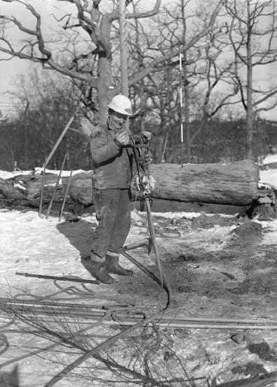 Bergborrare på skyddsrumsberget, Sörvik.