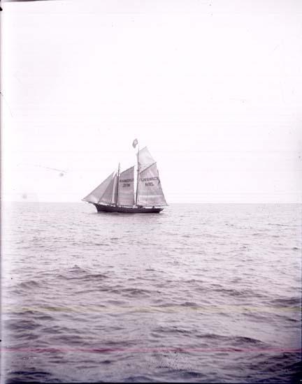 """Enligt text som medföljde bilden: """"Holländsk lotsbåt"""". ::"""