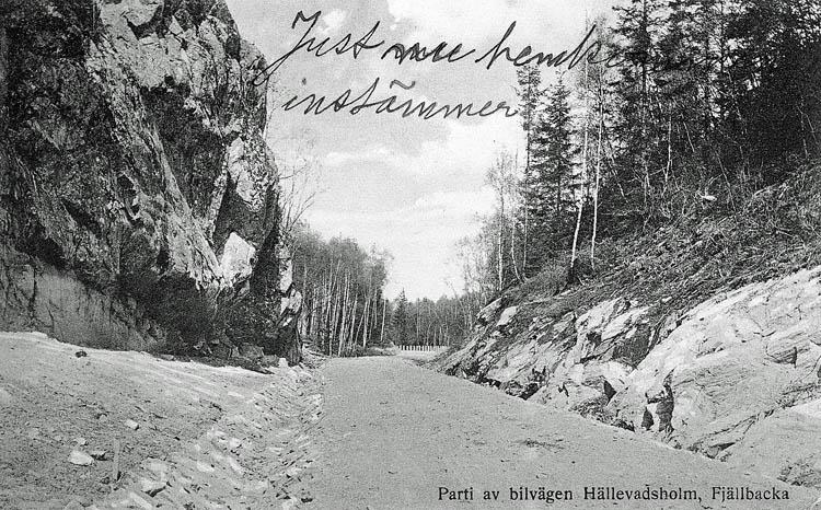 Parti av bilvägen, Hällevadsholm-Fjällbacka.