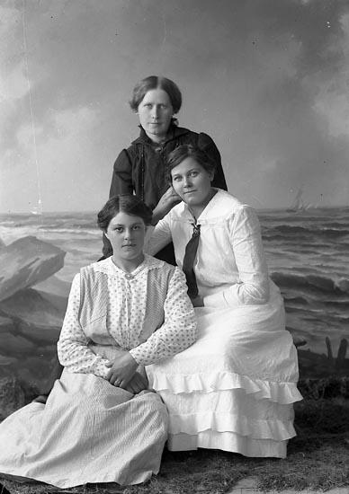 """Enligt fotografens journal nr 3 1916-1917: """"Andersson, Hilda Bageriet Här""""."""