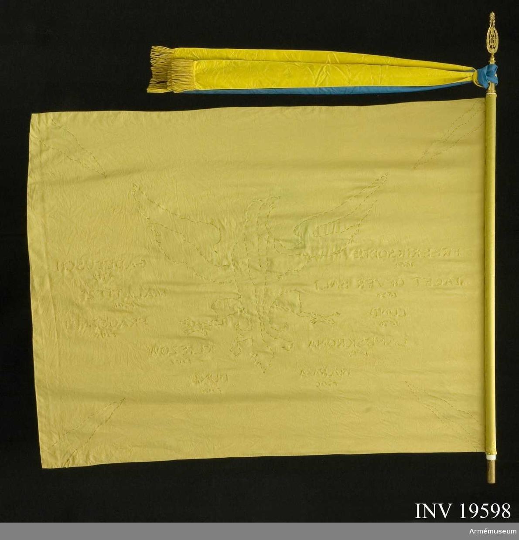Bottentyget har en gul-grön ton. Fanans huvudmotiv består av en svart örn med segernamn runtom. I de fyra hörnen svarta strålar. Örnen har ett mycket tungt broderi. (Alltför tungt till ett sådant bottenmaterial). Segernamn har broderats utspridda över duken med metalltråd, vilket gjort att stora håligheter finns runt flera bokstäver.  Samhörande nr AM 19598-19602, fana, spets, 2 st fodral, skyddsduk,