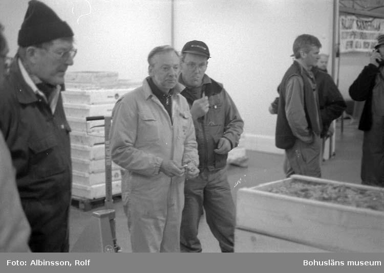 """Enligt fotografens noteringar: """"Uppköpare från vänster Björn Bengtsson, Göran Ekelöf """"salten"""", Gösta Karlsson. Sten Lundberg som på kvällarna jobbar för Sven Pettersson, som pratar i """"nallen"""".  Fototid: 1996-04-03."""