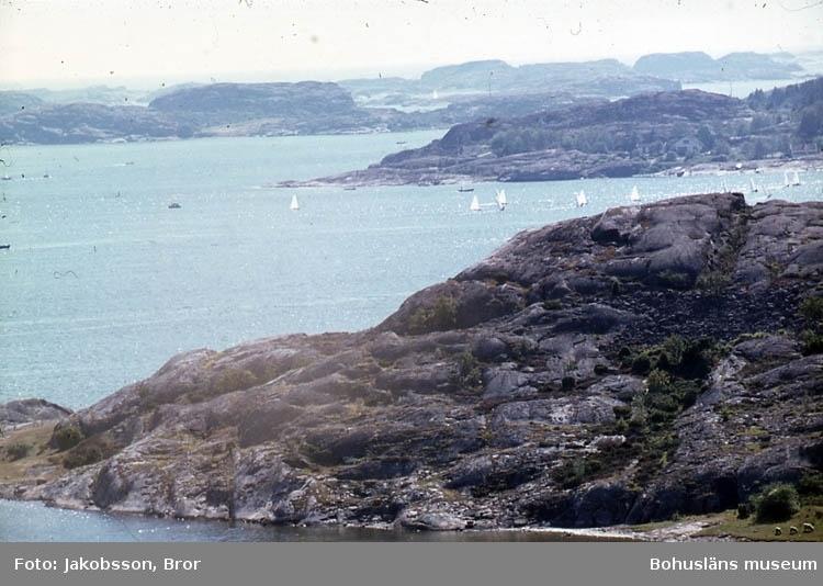 """Enlig Bror J. egen not. """"Från kappseglingar 7 augusti 1976. Mirror med röda segel och Triss, också småbåtar, startade i hamnen och gick runt flagget Valö och Köttö tre gånger.Återfärden mot hamn satte Mirror upp spinnaker. Kölbåtarna gick också ut från hamnen men gick norrut, förbi Valö och tävlade på leden i höjd med Danneholmen, innan de återvände till målet vid Badhusholmen. De kom i mål senare än småbåtarna. Andungarna tävlad även till havs. Jag hade satt mig på Rösekullen och hade utsikt mot båda tävlingsplatserna, men ut till havs nådde inte teleobjektivet och solglittret var ej fotovänligt"""". """"Kapseglingar 7/8 1976 mot ValöochKöttö, samt för Kölbåtarna, norrut förbi Valön mot Danneholmen och tillbaks mot Badhusholmen. Tagna från Rösekullen""""."""