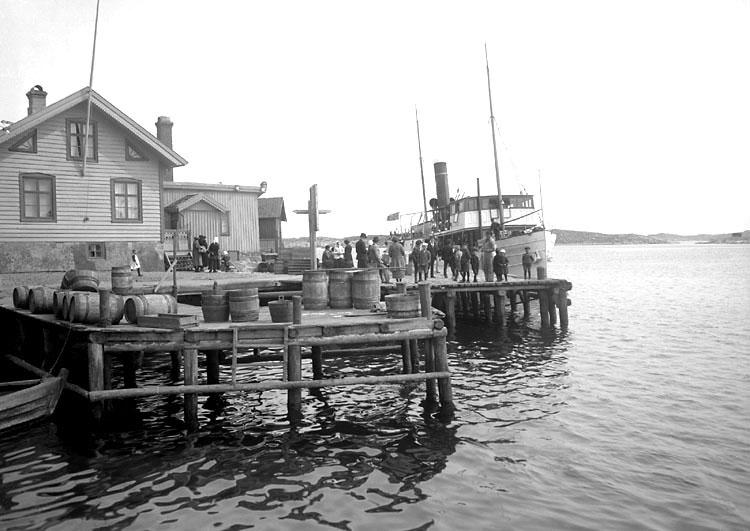 Ångfartyget ALBREKTSUND på Gullholmen 1924
