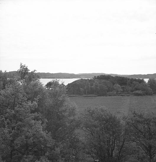 """Text till bilden:""""Gunnarsson, Sommarstuga. 1946.05.26""""."""