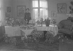 """Text till bilden: """"Fru Anna Berlin, Häggvall. 50 år. 1950.02"""