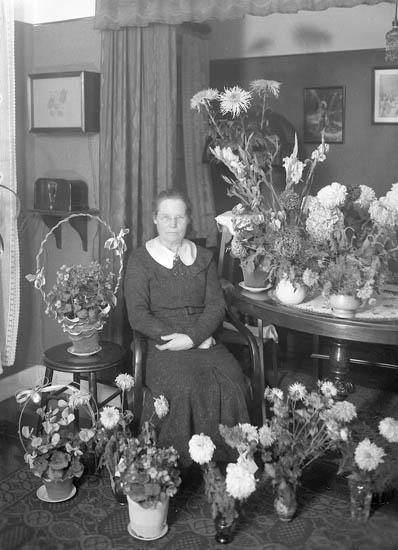 "Text till bilden:""Fru Jörlin""."