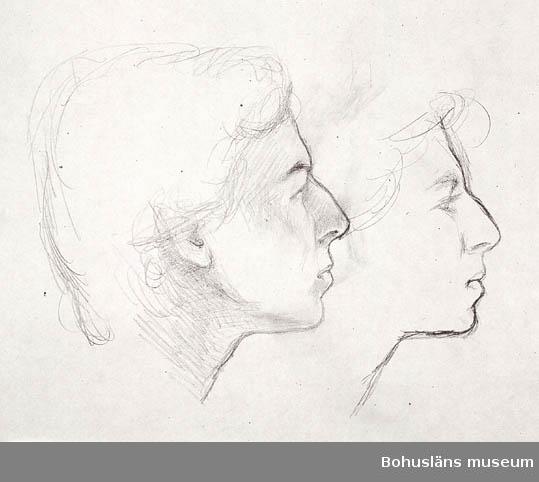 Kvinnohuvuden