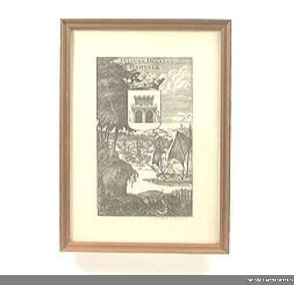Inglasat motiv i träram. svartvitt tryck efter etsning. Motivet föreställer en hamn och en borg i bakgrunden, höga träd och snåriga rötter i förgrunden. I mitten av bilden ett vapen med lejon och krona över. Inskrift på bilden i latin: INSIGNE DUCATUS BAHUSIAE.MM02441 och MM02442 verkar höra till samma serie.