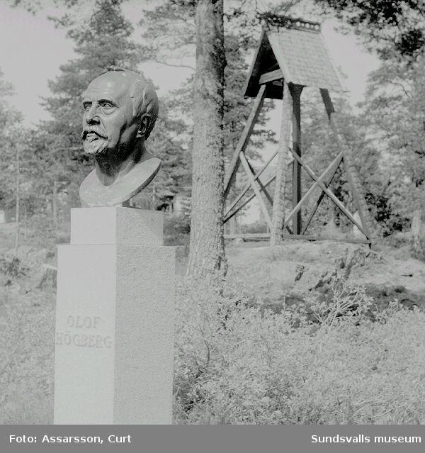 Byst föreställande Olof Högberg. Olof Högberg samt C-E Hammarberg och Anders Wide var pionjärerna för fornminnesvården  i Medelpad,/ se. Minnesskrift 1981.
