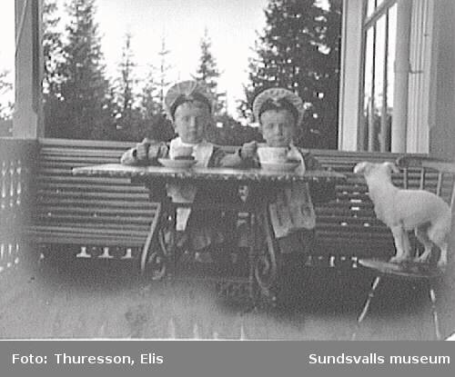 Tvillingarna Walter och Bertil Thuresson med hund på verandan till familjens sommarbostad Thurebo, Petersvik.