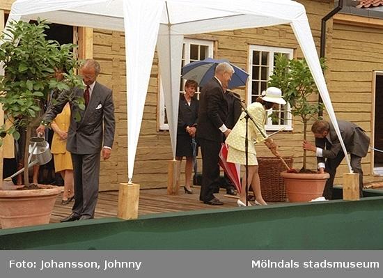 Kung Carl XVI Gustaf och drottning Silvia planterar två vårdträd/fruktträd utanför Tjenstefolksbostaden. På scenen står även landshövdingen Göran Bengtsson och Kaj Johansson.