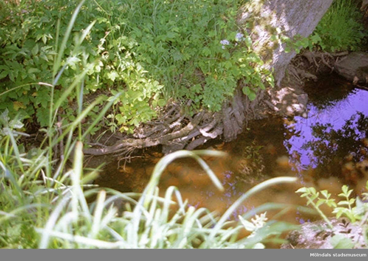 Ingemantorp 2:39 i Lindome, 2001-05-15. Byggnadsdokumentation inför planläggning av Fågelstensområdet.