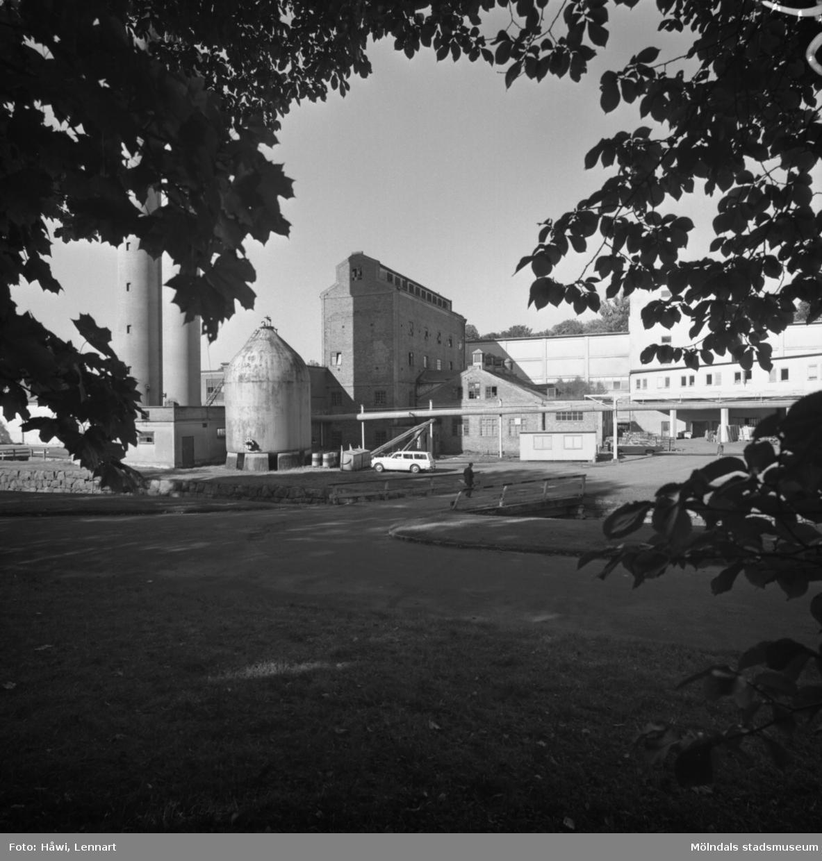 Sulfitfabriken på Papyrus i Mölndal, 4/10 1968.