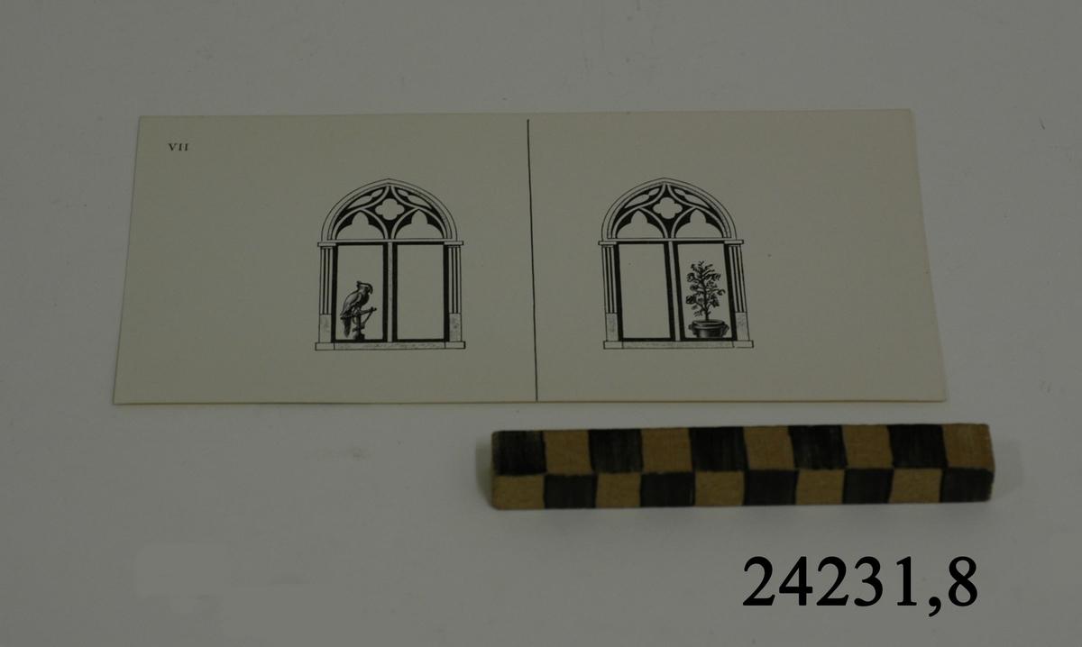 Rektangulärt vitt pappersark, numrerat VII i övre vänstra hörnet. På arket syns två stycken olika bilder i svartvitt, en för vardera öga. Till vänster: Ett bågformat fönster. I fönstrets vänstra halva syns en fågel sittande på en ställning. Till höger: Ett bågformat fönster. I fönstrets högra halva syns en hög växt i en kruka.