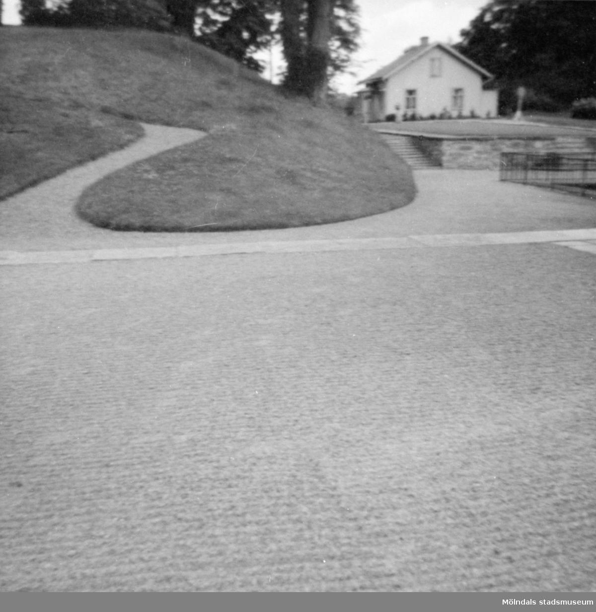 Vy mot öster över en del av parken. Gunnebo slott 1960-tal.