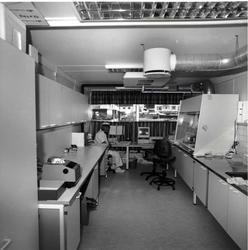 Hemsedal meieri vart nedlagt 21. juli 2001. Ove Eggestøl på