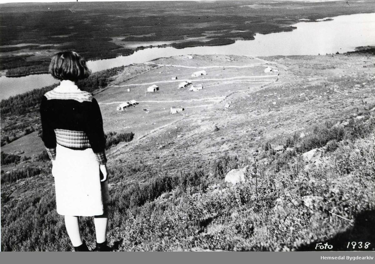 Nøreli i Gol  sett frå Nonsnatten i 1938.