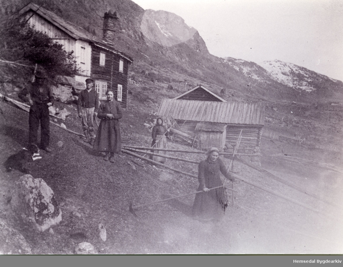 Møkakøyring og røing på Imre. Frå venstre Per K. Embre (1840-1929) og kona Ingebjørg (1844-1927).