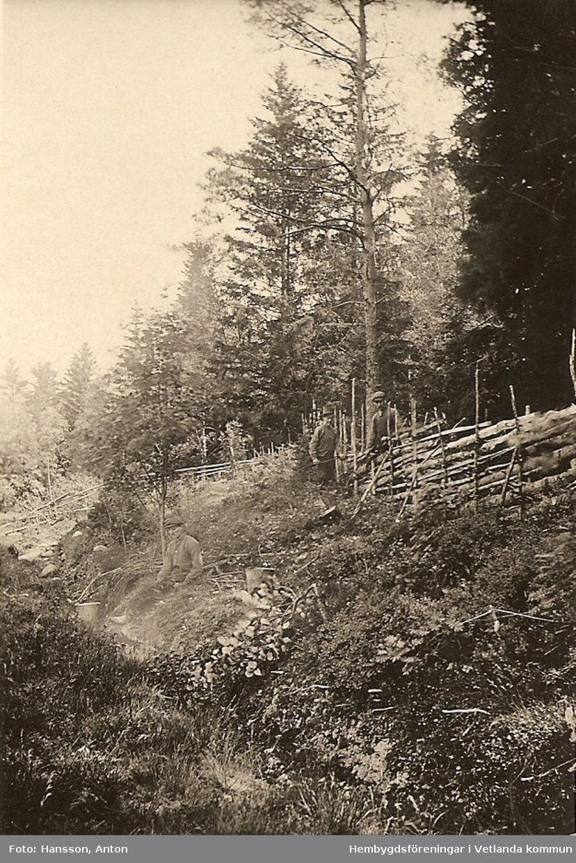 Karl Hansson och två män i skogen.  Fröderyds Hembygdsförening