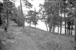 Hallersbyns kvarn, Dalskog