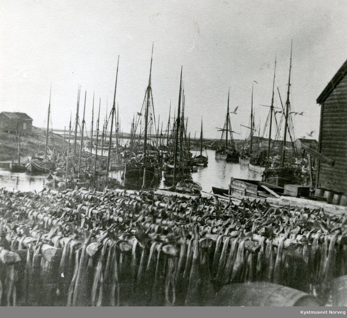 "Sør-Gjæslingan, ""Fisketørk"""