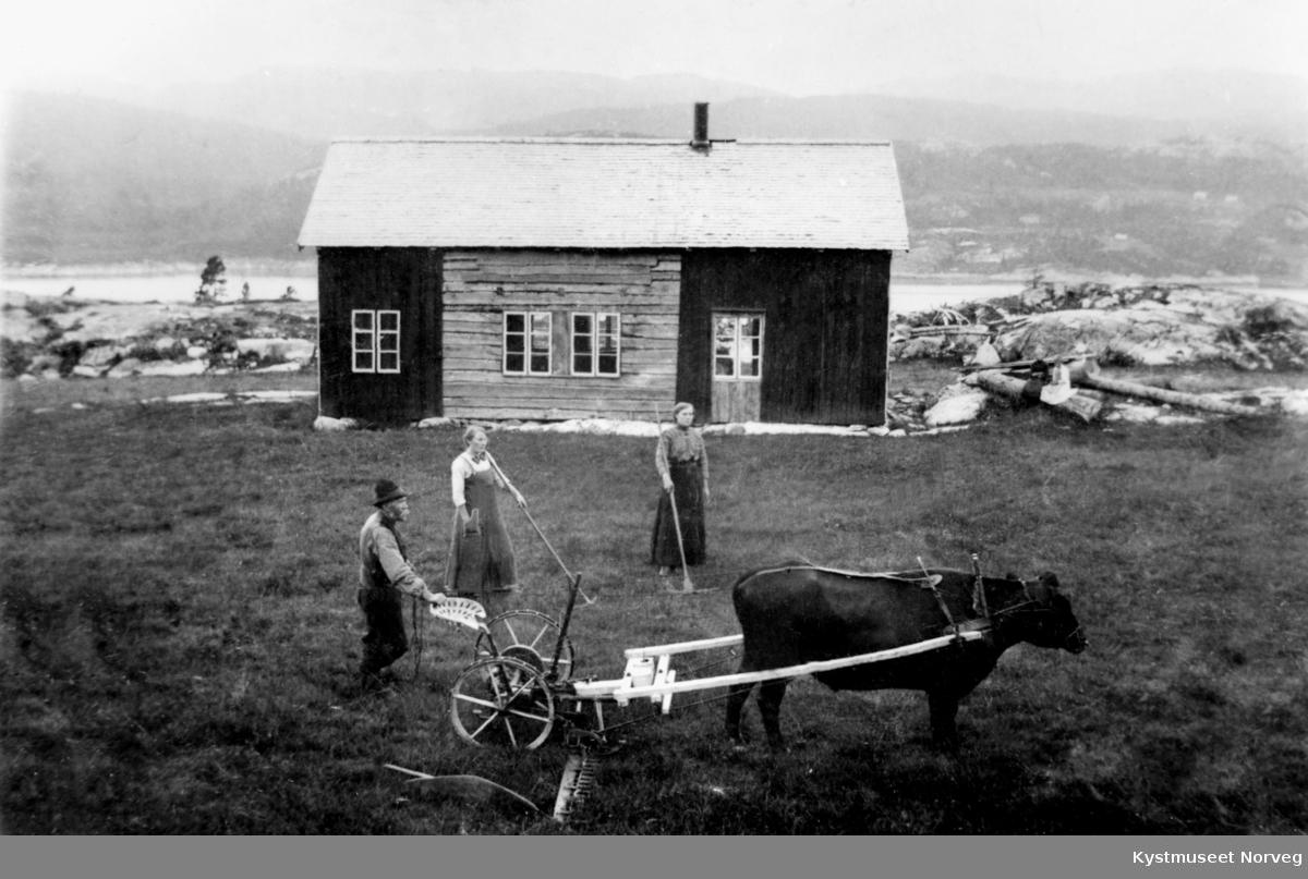 Petter Persvik sammen med døtrene Gudrun og Emma. Fra småbruket Persvika eller Selvik på Kreklingan i Nærøy kommune