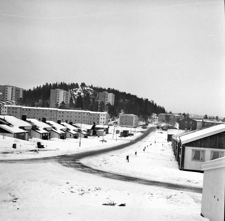 """Enligt notering: """"Tureborgsområdet - Skogslyckan 29/2 1960""""."""