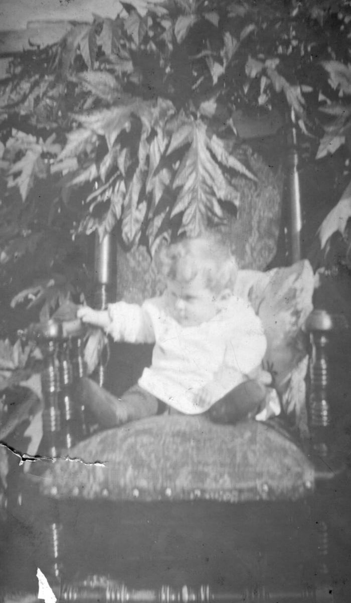 Et lite barn sitter i en lenestol med mye planter rundt. Barnet er ukjent.