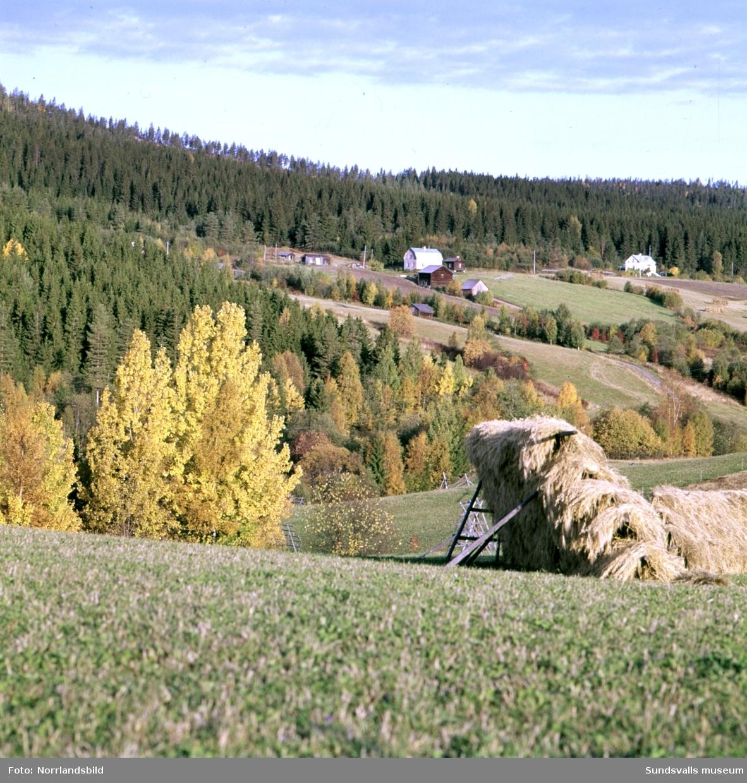Vyer över landskapet invid Indalsälven med bland annat tjänstebostäderna vid Järkvissle kraftverk.