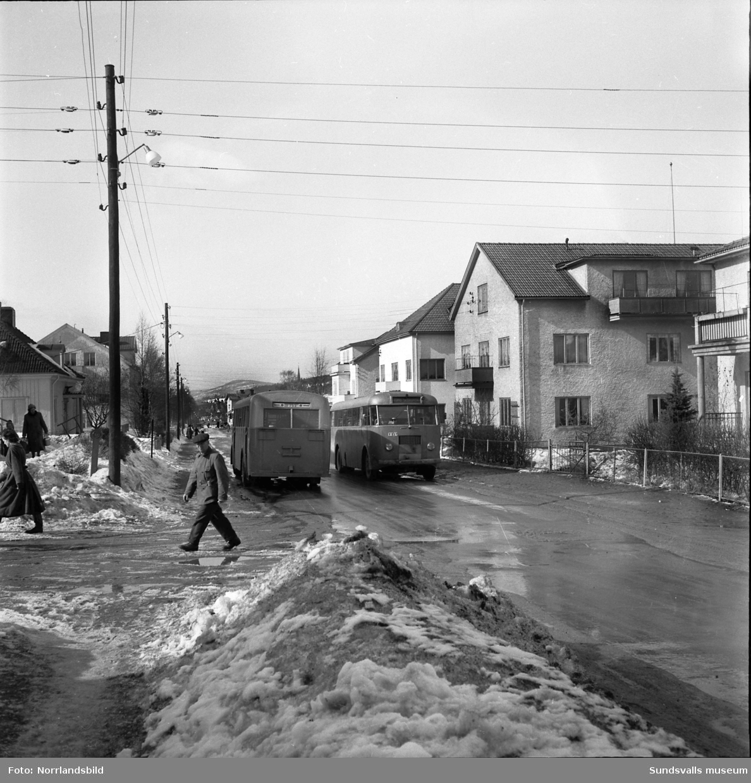 Efter en snörik vinter med sen snösmältning får lastbilar och bussar kryssa mellan gångtrafikanter och barnvagnar på Fridhemsgatan i trakterna av korsningarna med Vintergatan och Skogsgatan.
