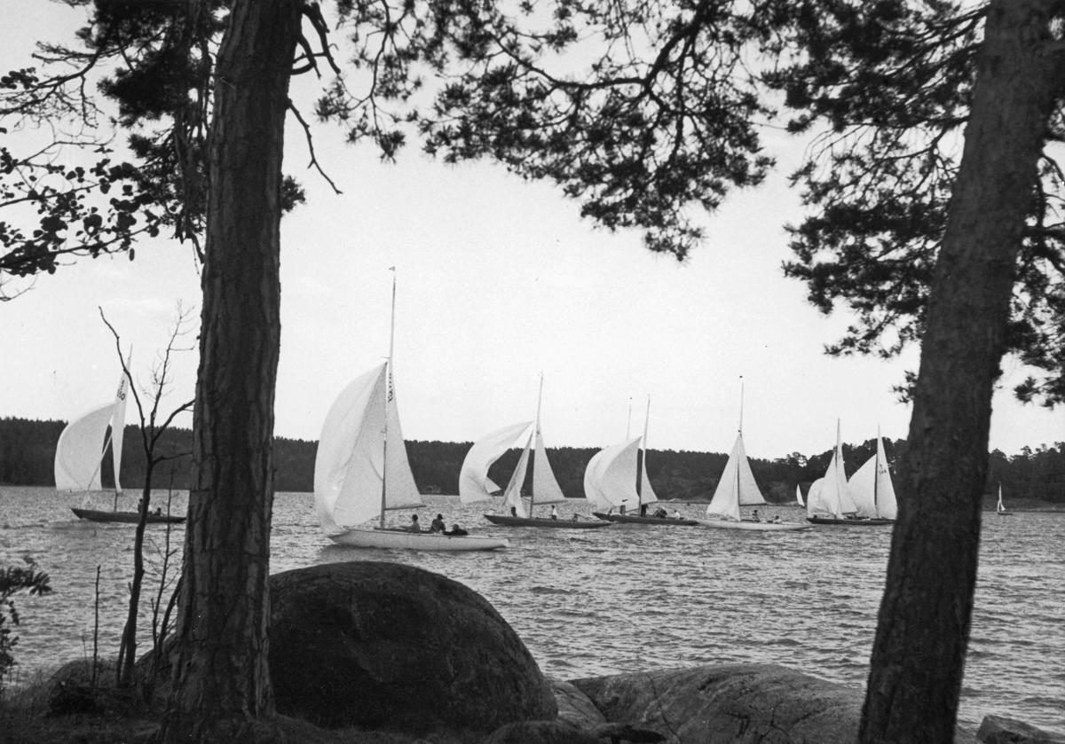 Övrigt: Från KSSS poängseglingar i Saltsjöbaden 5 juni 1943. De segelnummer som med lupp går att urskilja på bilden är 5-S50 MARIBELL (längst t v), 5-S55 SJÖRÅTU och 5-S66 GULLMAR III (båda i bakgrunden t h).