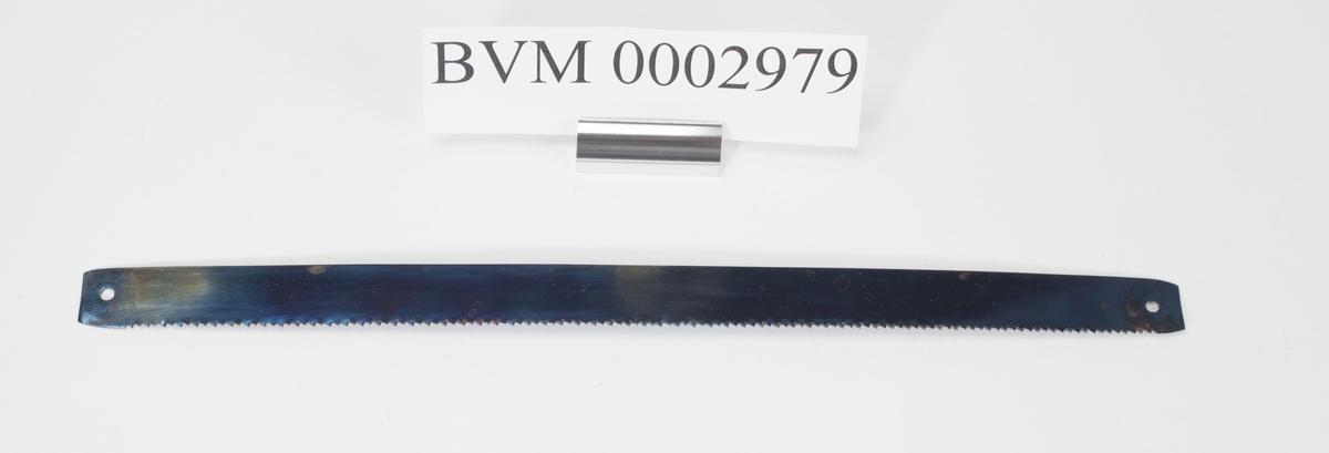 JFR. BVM 2977.