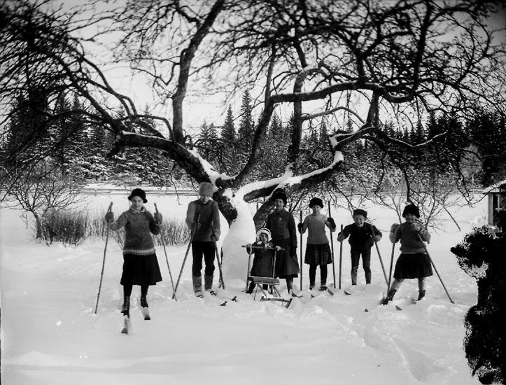 Skidåkning, 7 barn.Alf. Andersson, Ökna, Gropen, Kvistbro socken.