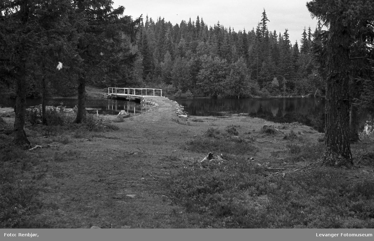 Natur ved Dalaelva og Tvårråsjøen.