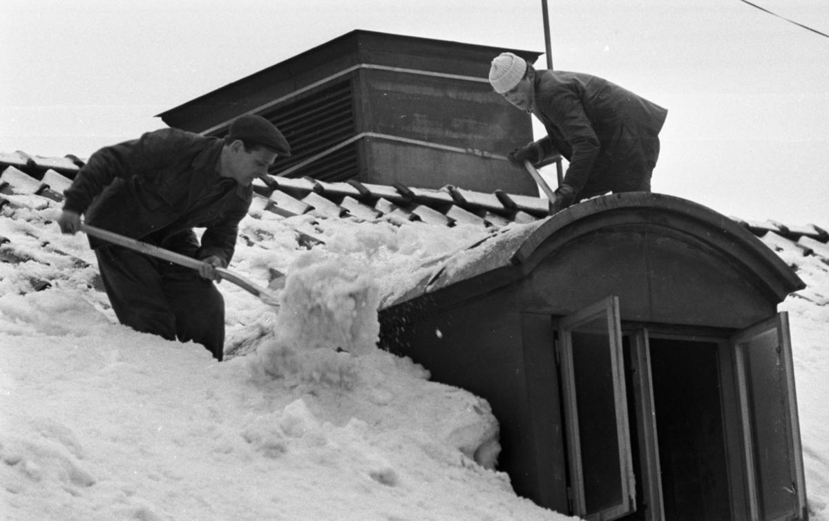 Skottar utan lina 3 mars 1966