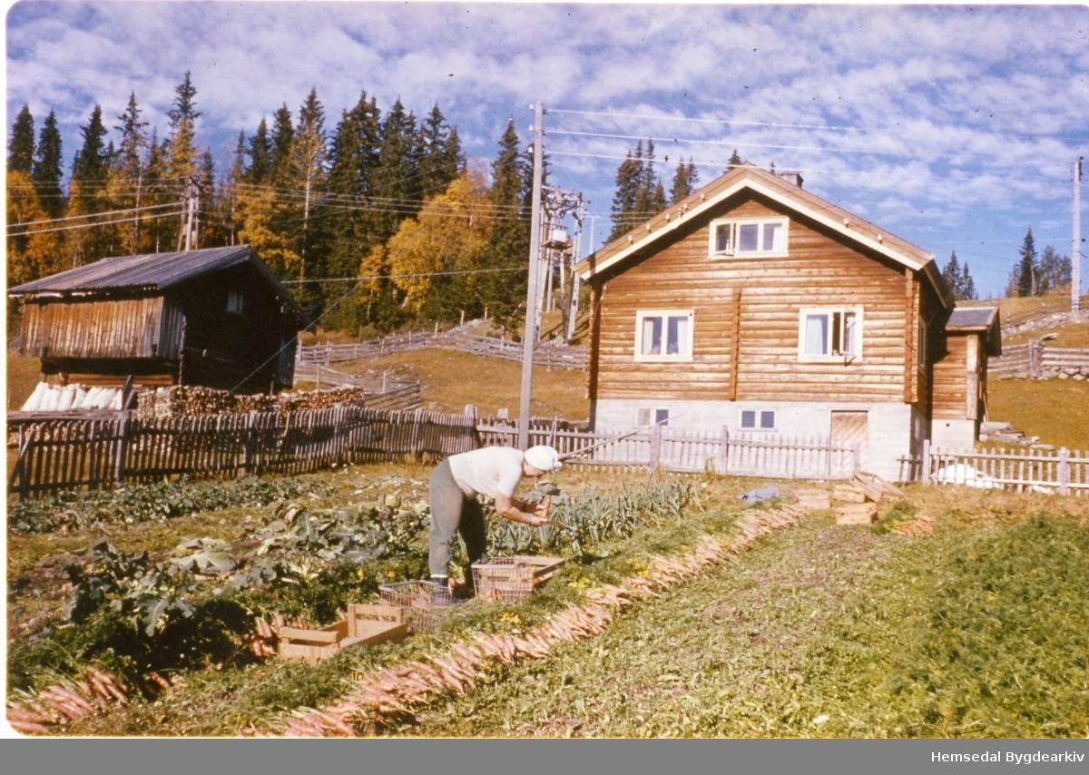Anne Ålrust, fødd Grøthe i 1918, i kjøkenhagen på Søre nedre Ålrust i Hemsedal