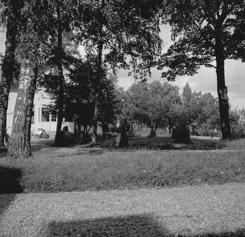 Koffsta, domarring. Bostadshus.22 augusti 1953.