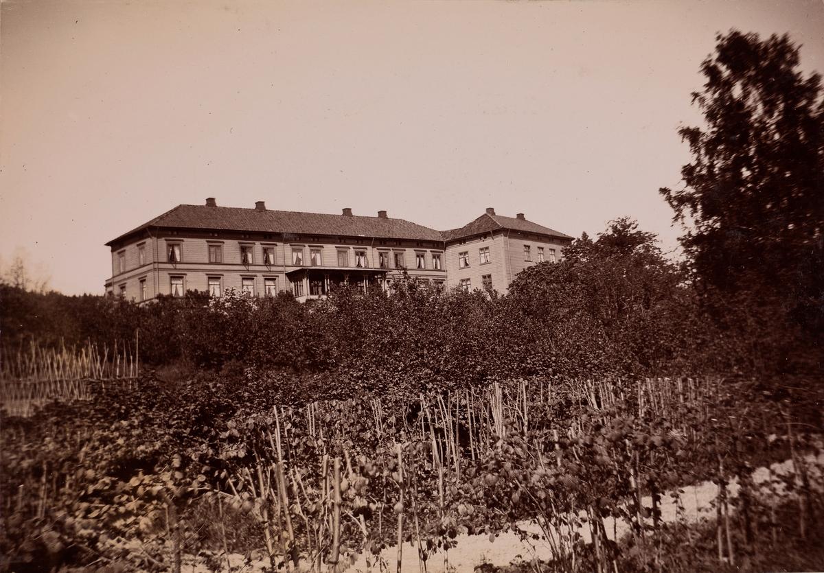 Linderud Gård sett fra hagen med frukttrær.