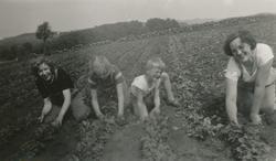 Roetynning på Fosse, frå venstre ei jente frå Askøy , Kari F
