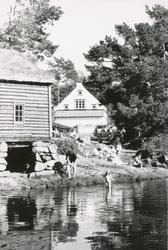 Bading og sommeridyll ved Dybhuset og Fjordmannsstova på Mus