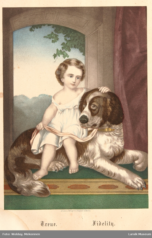 barn og dyr