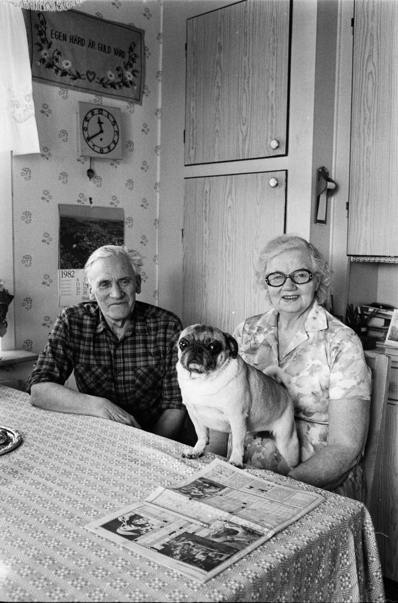 Eric Sahlström hemma i köket med frun Anna och hunden Gurkan, Göksby, Uppland 1982