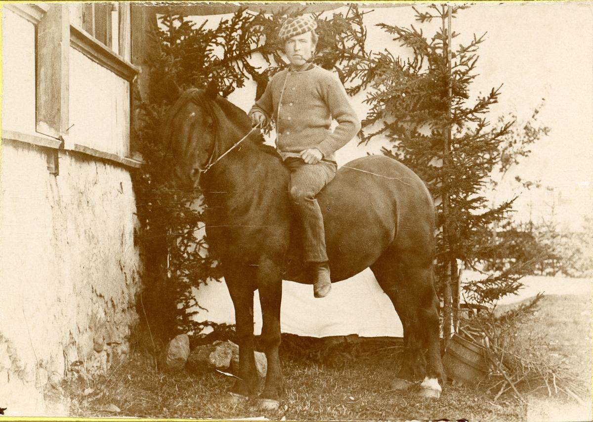 Ola T, Islandsmoen på hesten Silkesvarten ved Liffengren, ca 1900.