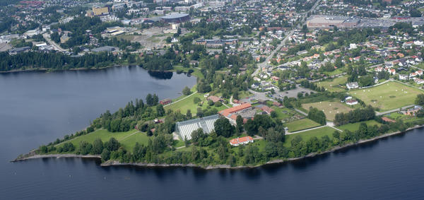 Flyfoto som viser Domkirkeodden der den stikker ut i Mjøsa med sine bygninger. Foto/Photo