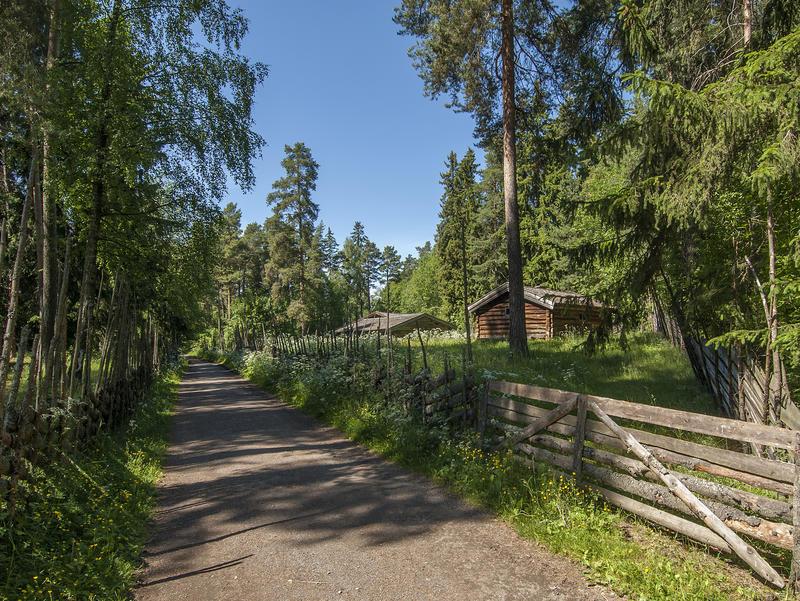 Grusveg med skog på begge sider og en liten setervoll med et par brune tømmerhus til høyre bak ei grind.